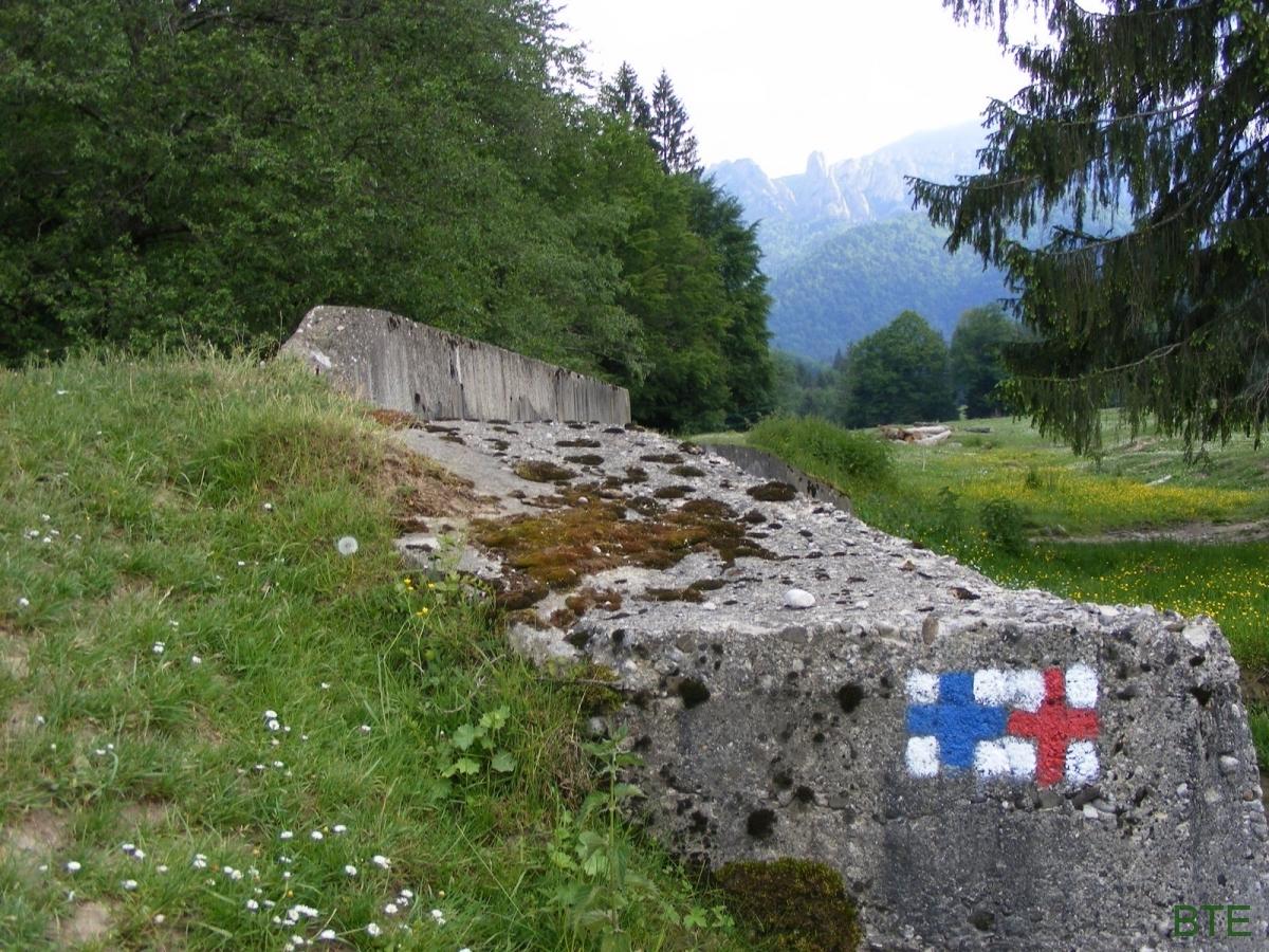 2008-csukas-havas-189